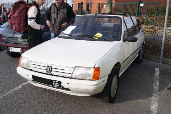 Peugeot 205 CJ 1989