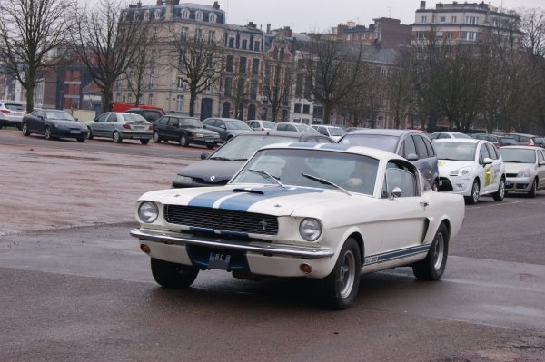 Shelby GT 350 1966