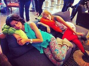 Bella et Zen entrain de dormir . Photo Twitter .