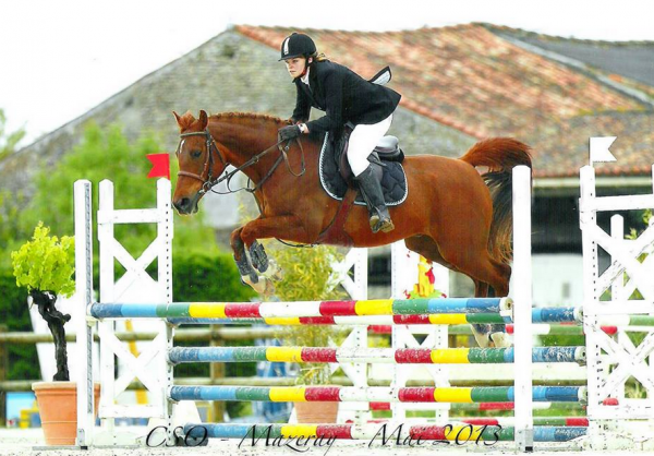 L'équitation : Un sport, Une drogue, Une passion