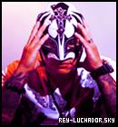 Photo de Rey-Luchador