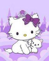 Charming-Kitty