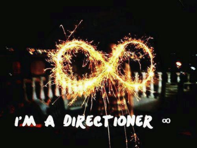 Fuck your opinion , I'm Directioner ♥