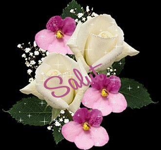 Bonjour bonne journee a vous tous et toutes