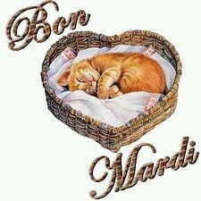 Je vous souhaite un bon mardi