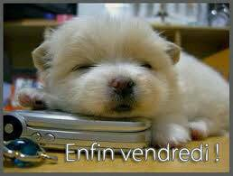 Bientot le week end!!!