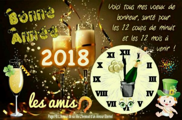 Bonne et heureuse année 2018 prenez soin de vous bisous