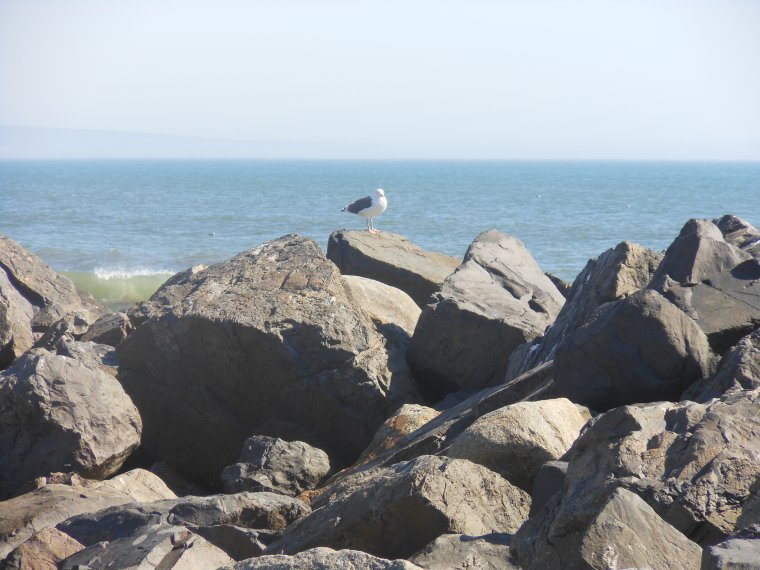 Coronado Beach !! Class Trip