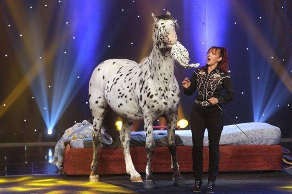 ce soir rosie hoccheger et son cheval scout au plus grand cabaret du monde blog de vendee. Black Bedroom Furniture Sets. Home Design Ideas