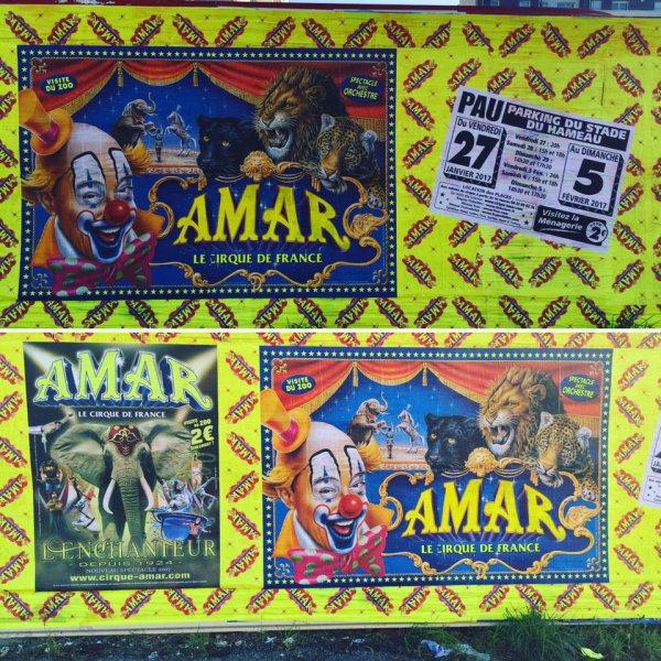 """le cirque AMAR s affiche à pau avec son nouveau spectacle """" l 'ENCHANTEUR """" !!!!"""