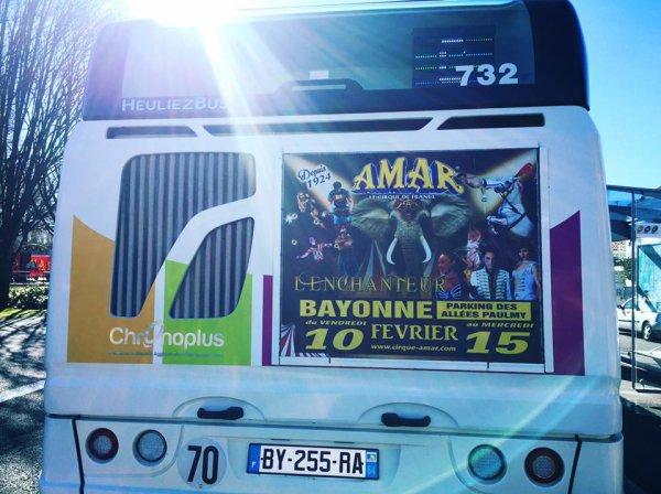 le cirque AMAR s affiche sur les bus à bayonne !!!!