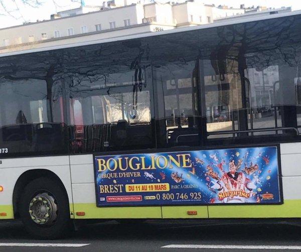 le cirque D HIVER BOUGLIONE s affiche à brest avec son nouveau spectacle SURPRISE !!!!