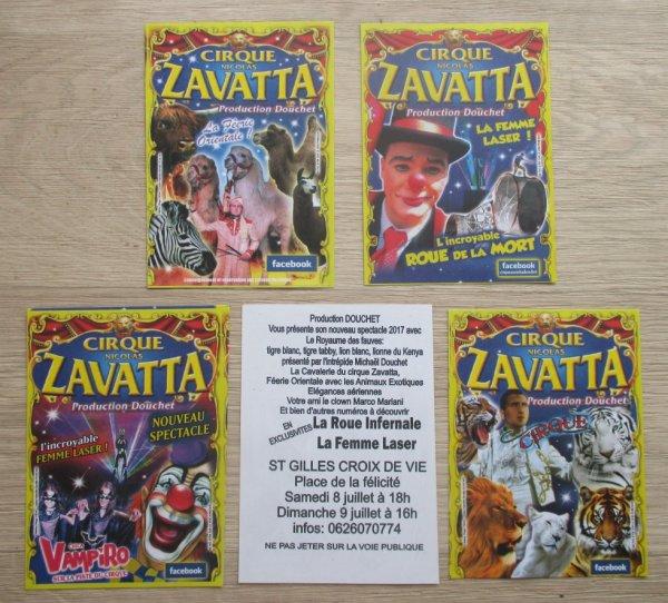 plusieurs modèles de flyers au cirque nicolas zavatta !!!!