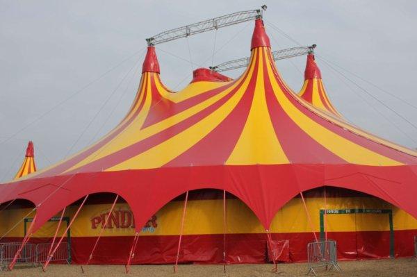 """le cirque PINDER bientot à paris avec son nouveau spectacle """" les nouvelles étoiles de la piste """" !!!!"""