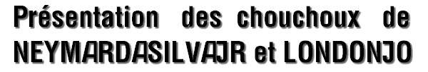 PRÉSENTATION DES CHOUCHOUX ♥