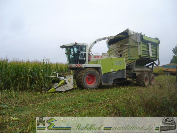 Ensilage 2010 : CLAAS Jaguar 900 Field Shuttle