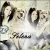 ......      Ta nouvelle source sur la célèbre Selena Gomez pour suivre toute son actu' !    ......