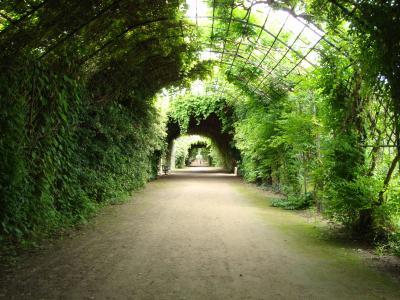 Zoom sur... le parc du Château de Compiègne