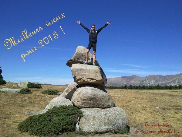 Bonne année 2013 !