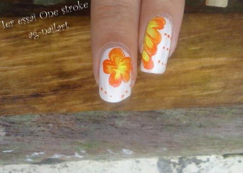 Présentation : Peinture acrylique pour le nail art