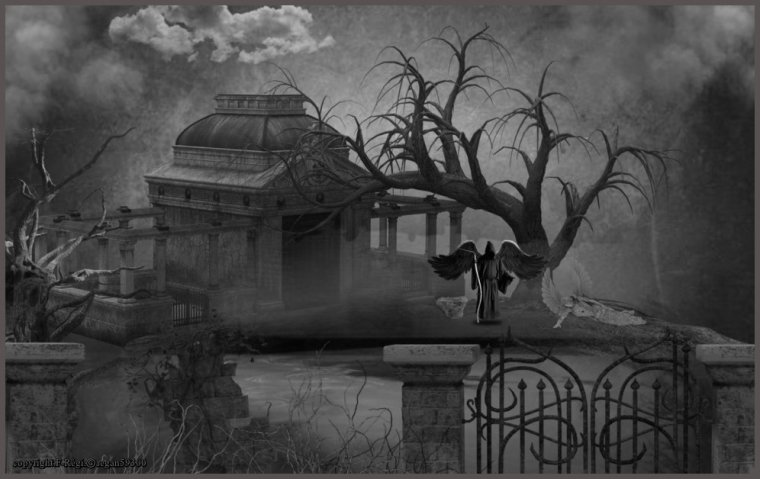 ☠༺༻Les ombres de la solitude༺༻☠