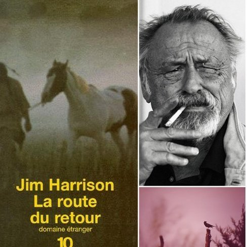 * GoodBye, Jim Harrison *