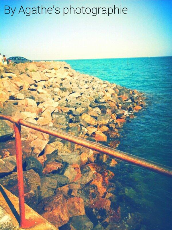 Grande Vacances♥♡♥