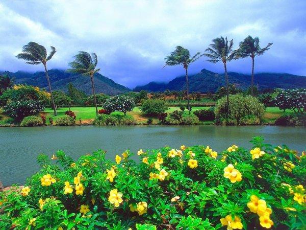 c beau.....la nature^^