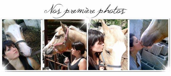 Le meilleur des chevaux n'est pas celui qui t'as mené ou tu voulais alors que tu étais en selle, mais celui qui a fais voyager ton coeur alors que tu l'écouté respirer ...