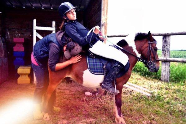 """la prochaine fois que vous entendrez que c'est , """" simplement un cheval """" , contentez vous de sourire, parce qu'ils ne peuvent """" simplement """" pas comprendre.."""
