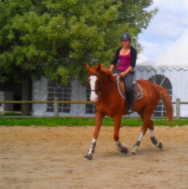 L'équitation est la perfection des choses simples