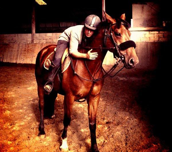 """""""Souvent déçu par les êtres humains , j'me réfugie auprès des chevaux.."""""""