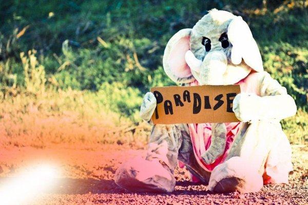 Et si le paradis était sur terre?