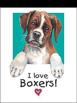 i love you boxer