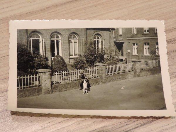 PHOTOS LUFTWAFFE + MASCOTTE  WW2