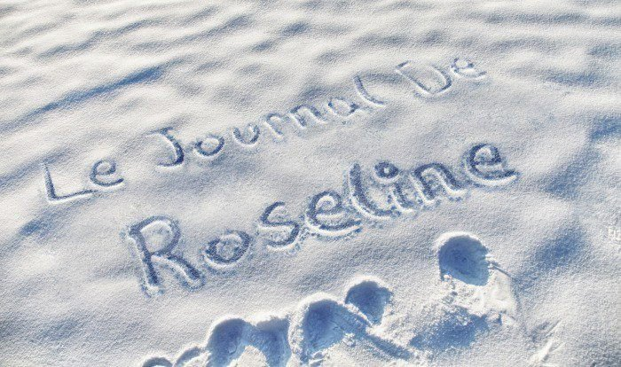 LE JOURNAL DE ROSELINE de LE-TRIO-ILR