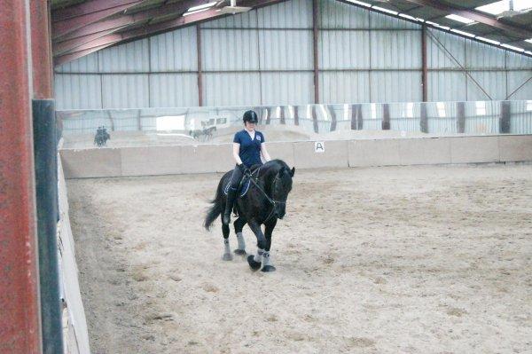 Love horse ♥