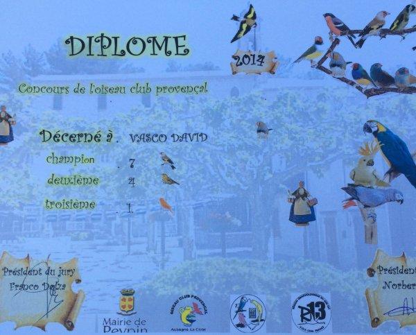 Résultats concours peypin 2014