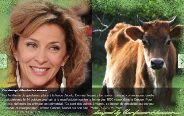 Corinne Touzet défend Vachement bien les Veaux !