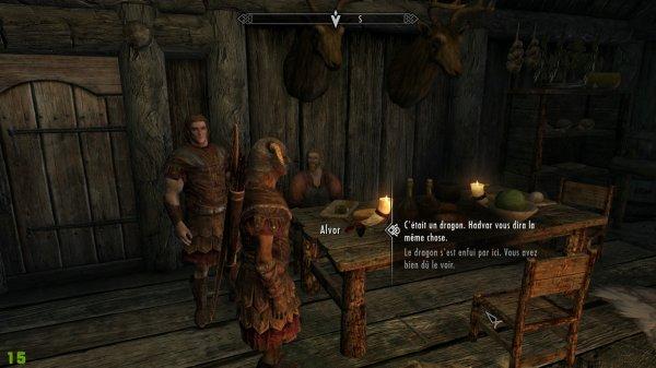 Première image de Skyrim édition spéciale avec un elfe des bois mage cette fois pour les sombrages et non l'empire