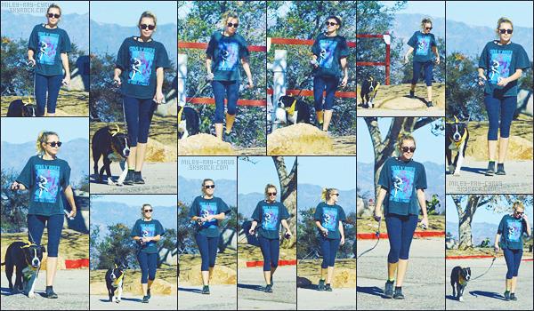 - 23/01/18 - Miley Cyrus a été photographiée alors qu'elle sortait, Mary-Jane son chien, en balade dans Studio City.• • La jeune chanteuse été donc opté pour une tenue décontractée qui lui va superbement bien je trouve, elle était souriante, je lui donne un top !-