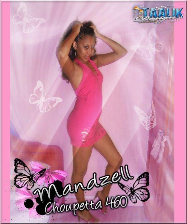 Montage pour Mandzell' Choupetta 460