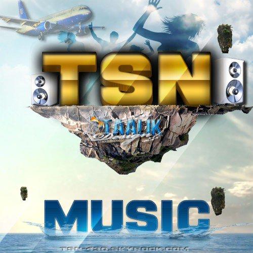 Montage pour TSN 430