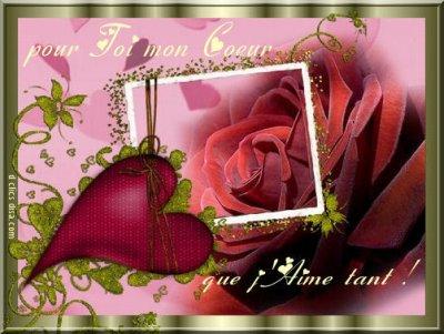 Bonne St Valentin a tous les amoureux