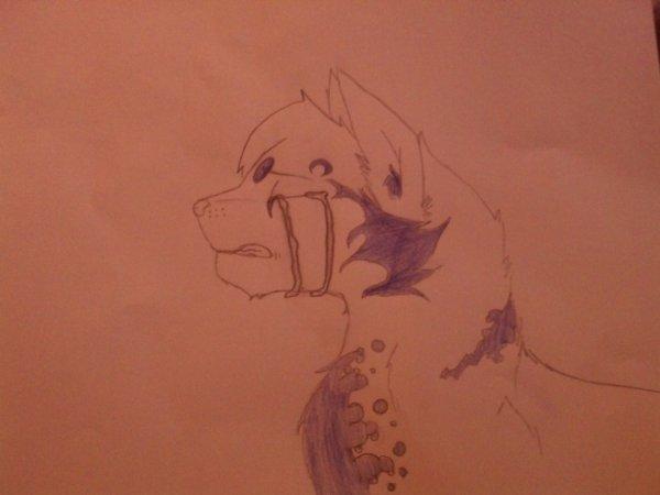 dessins fait par moi !