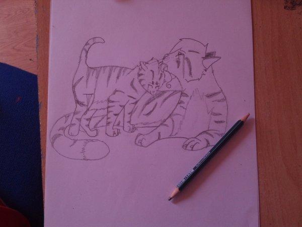 Mes dessins de mes personnages