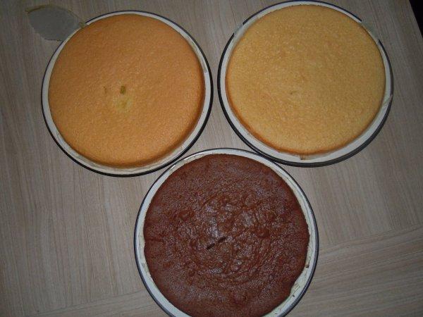 ...Génoises pour les gâteaux...