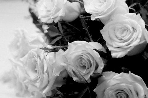 «Les larmes les plus amères que l'on verse sur les tombes viennent des mots que l'on a pas dits et des choses que l'on a pas faites.» Harriet Beecher Stowe