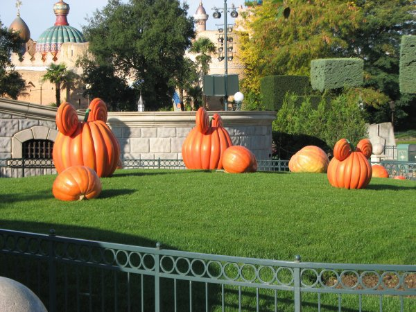 Disneyland 3 octobre 2010 - citrouilles