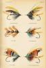 Mouches à saumon de l'époque Victorienne et mouches plus anciennes de la Spey et la Dee